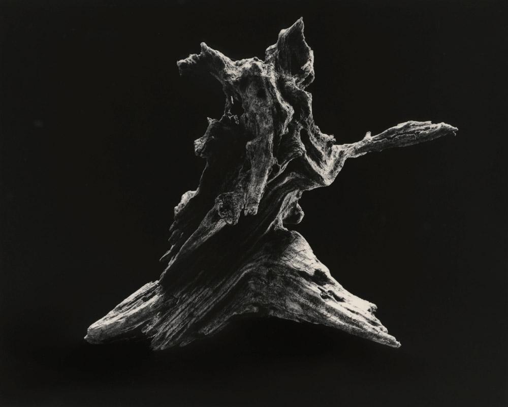Yamamoto Masao Shizuka=Cleanse #3037 Dance [E] 2014 Silbergelatineabzug © Yamamoto Masao